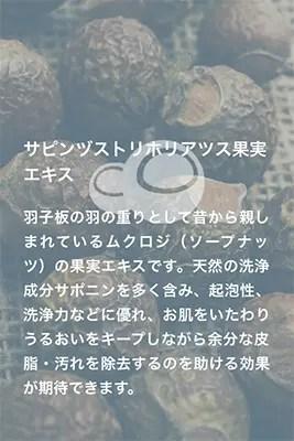 サピンヅストリホリアツス果実エキス.jpg