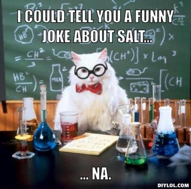 resized_chemistry-cat-meme-generator-i-could-tell-you-a-funny-joke-about-salt-na-15a059