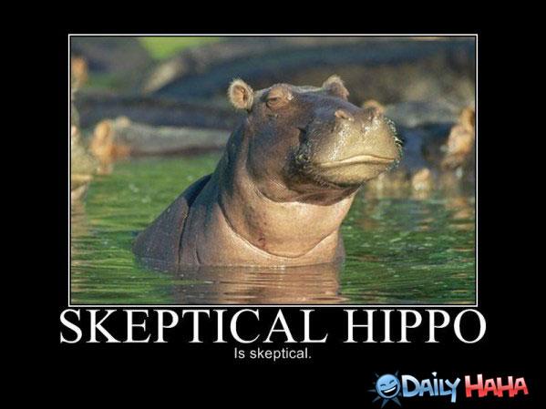 skeptical-hippo