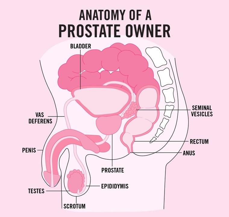 Prostatis mit kell tennie
