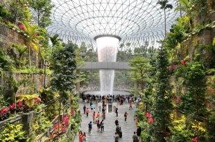 【新加坡機場轉機-服務-全收錄】東南亞轉機必看,樟宜機場,轉機過境必做3件事