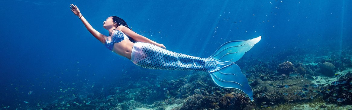Mermaid Copy