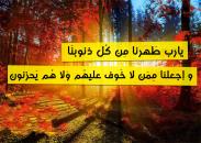 1234298_10151642122351226_2086045768_n