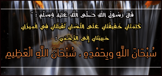 1238297_10151641833711226_1231640192_n