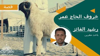 Photo of خروف الحاج عمر