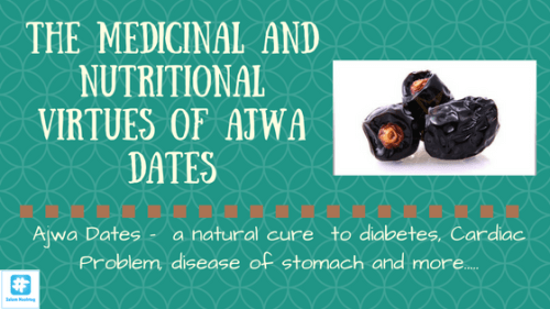Ajwa date and its immense medicinal benefits - Islam Hashtag