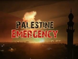 palestine donation