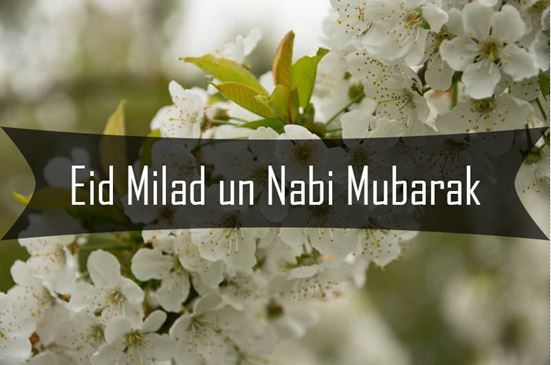 Eid Milad un Nabi SMS in Urdu, Hindi and English