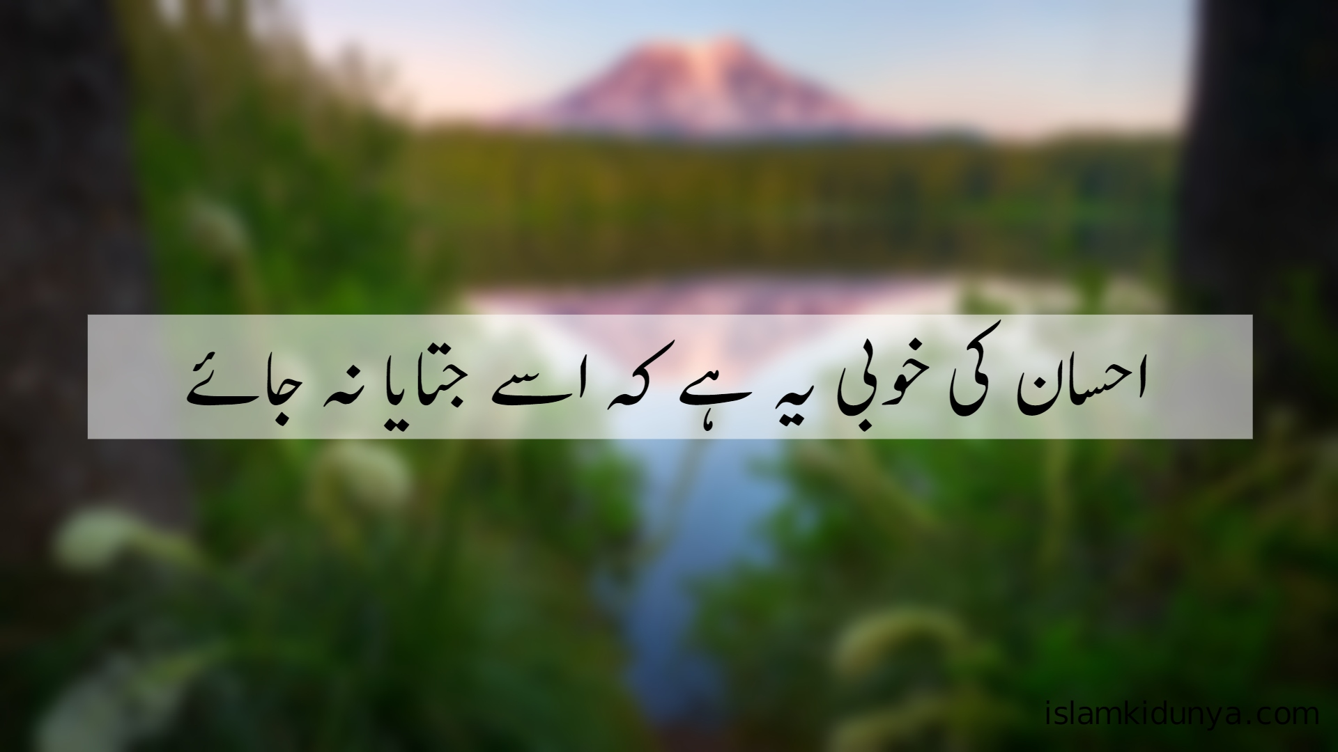 100+ Inspirational Islamic Quotes in Urdu With Beautiful ...