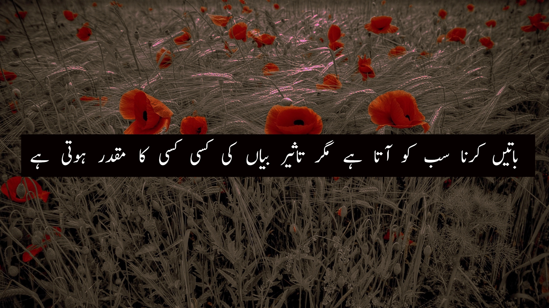 100+ Inspirational Islamic Quotes in Urdu | Life Changing ...