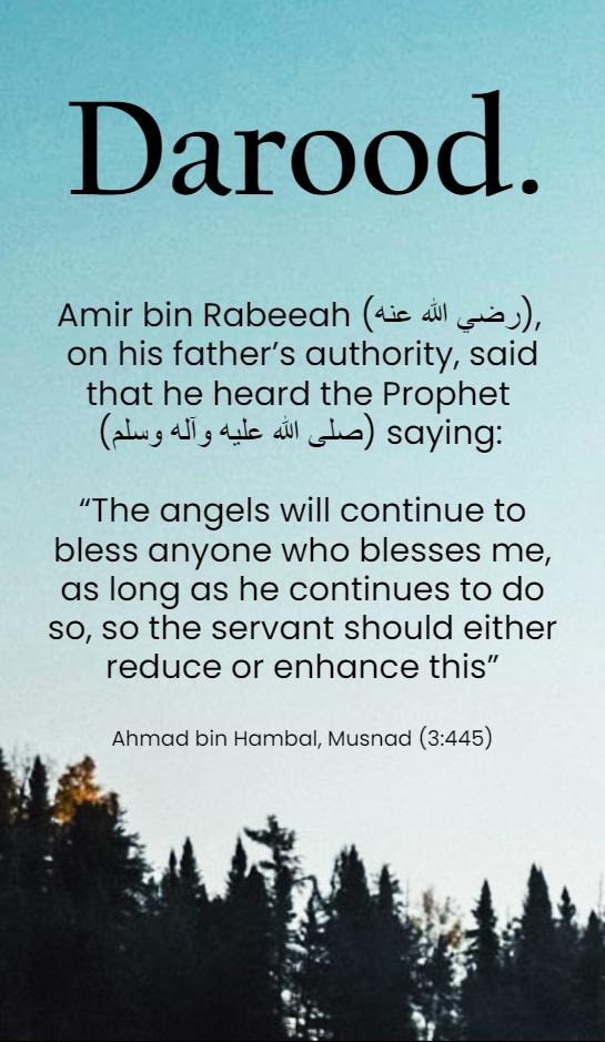 Quran & Hadith Quotes in English   Islamic Quotes