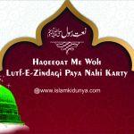 Haqeeqat Me Woh Lutfe Zindagi Paya Nehi Karte Lyrics
