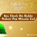 Kya Theek Ho Rukhe Nabavi Par Misaale Gul