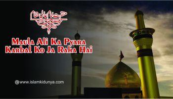 Maula Ali Ka Pyara Karbal Ko Ja Raha Hai