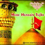 Mere Hussain Tujhe Salaam
