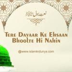 Tere Dayaar Ke Ehsaan Bhoolte Hi Nahin