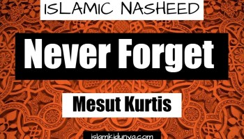 Never Forget - Mesut Kurtis (Lyrics)