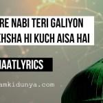 Shehre Nabi Teri Galiyo Ka – Naat Lyrics
