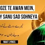 Tere Roze Te Awan Mein – تیرے روضے تے آواں میں – Naat Lyrics