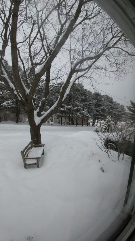 A quaint Maine scene