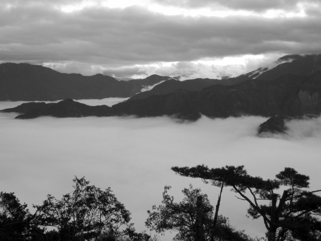 Photo: Sea of clouds atop Mount Ali