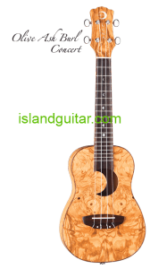 Island Guitar Ukulele Piano Store in Key West