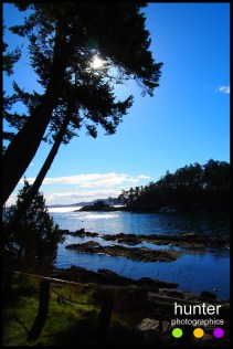 peter cove north, pender island