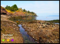 craddock beach , pender island