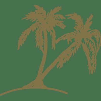 Island Hotel palm