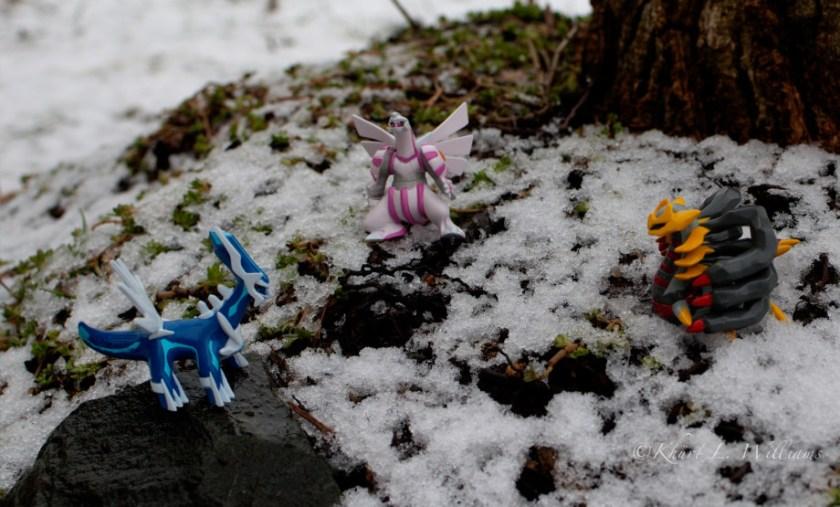 February 21, 2011 : Pokémon Battle DSC 6278  2  3  4  5 920x555