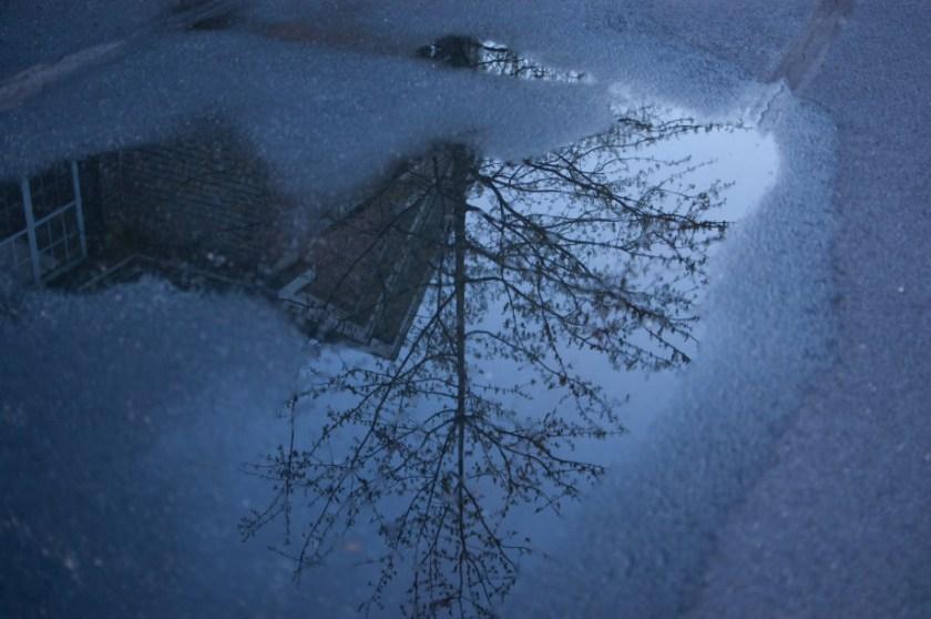 April 27, 2011 : Reflection at dusk 20110427 NIKON D40 7270 920x611