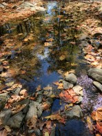 The Rock Brook was dry %name