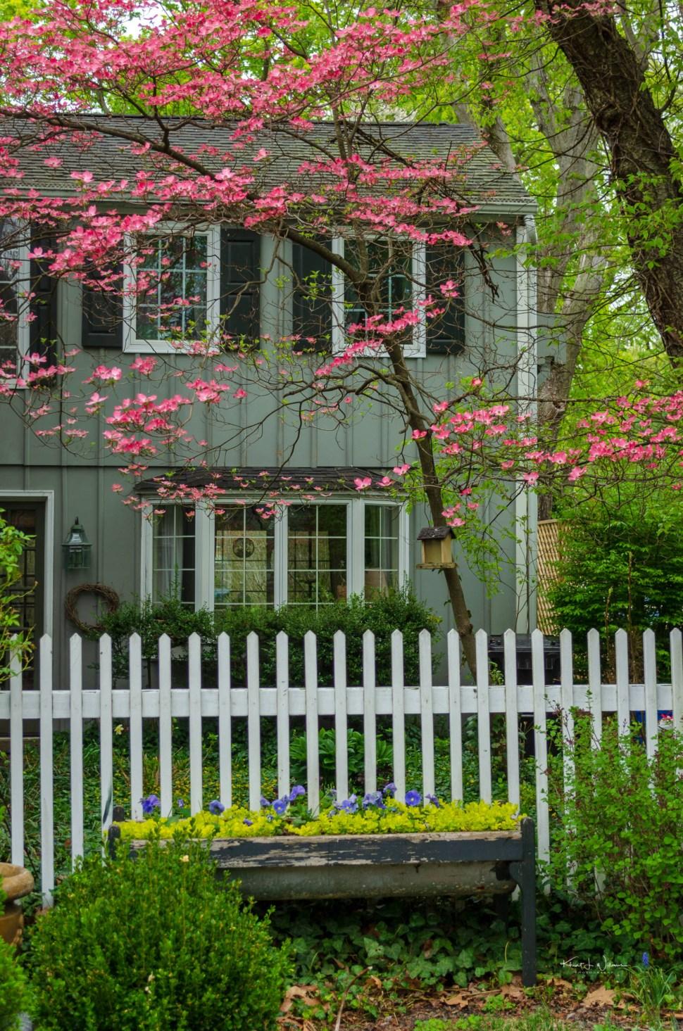 Crescent Avenue , Rocky Hill, House