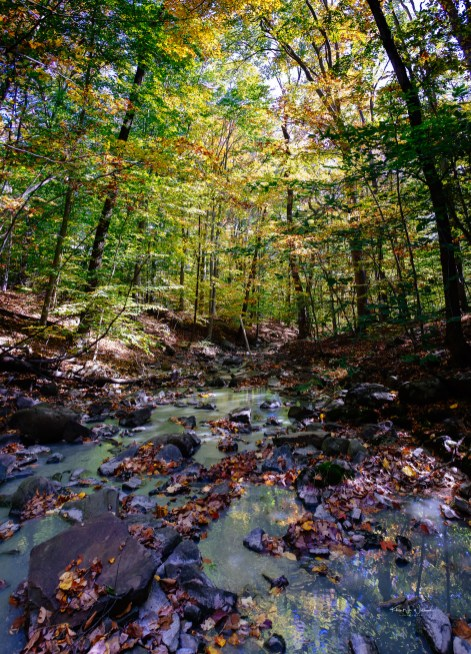 Rock Brook in the Eastern Sourland Mountain Range