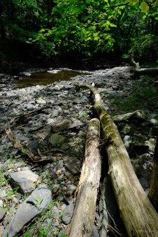 Frame 8, Rock Brook, Hollow Road, Skillman, Montgomery Township —FujiFilm X-T2 + XF16-55mmF2.8 R LM WR @ (16 mm, 0.017 sec at f/8.0, ISO200), © Khürt L. Williams