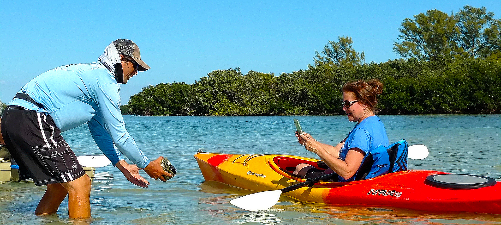 See all types of wild life while kayaking.