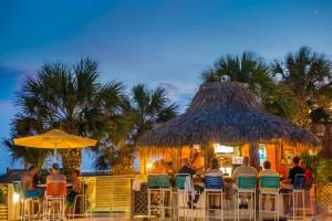 Oasis On An Island Beach