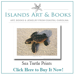 Sea-Turtle Islands Art and Books Store
