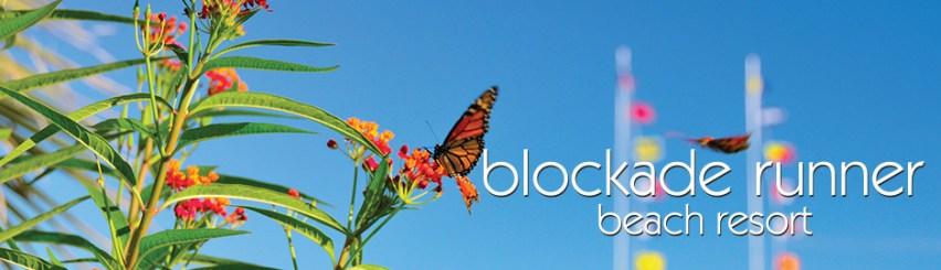 blockade runner Wrightsville Beach NC Weddings