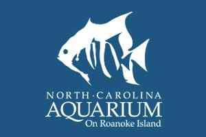 Visit NC Aquarium For Free!