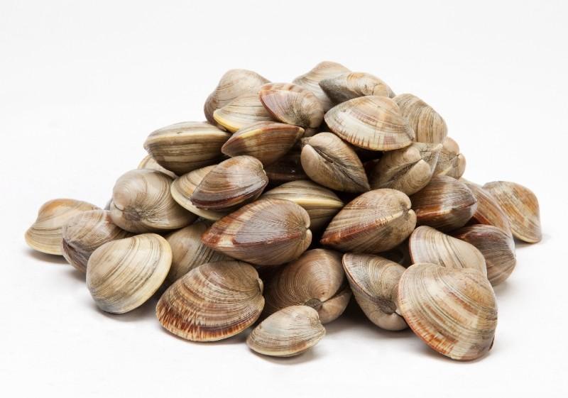 Island Life NC Magazine Seafood of the month: NC Clams
