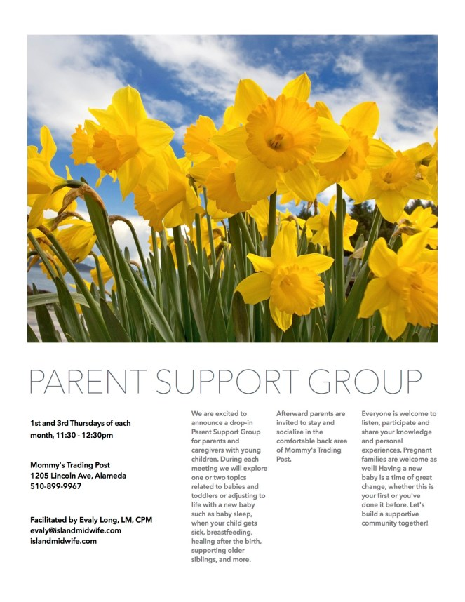 Parent Support Group pdf