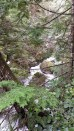 hiking-vancouver-island