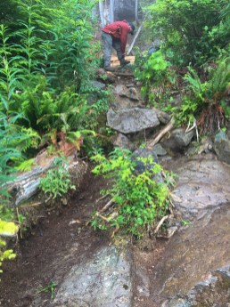 AFTER: work to clear a path for water. It's impossible to prevent water from ending up where hikers walk but this can eliminate most of it.