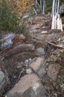 There is still water flowing down the middle of this section. It's coming from higher road. A small trench will help stop this by diverting water off the trail. Once this is done, we can explore options for placing a step.