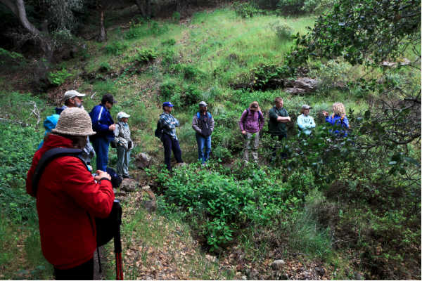 Hikers stop on the Pelican Trail to listen to the Naturalist.