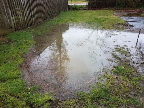 backyard drainage flooding staten
