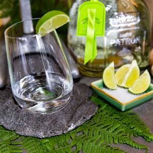 Stemless Coasters (Pair)