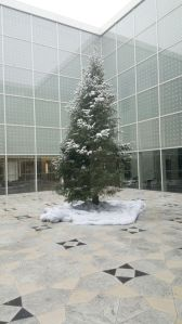 Christmas Tree at the Aga Khan Museum. Photo Salim Nensi