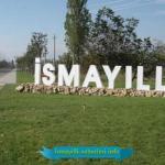 2020-ci ilin birinci yarısında İsmayıllı rayonunun sosial-iqtisadi inkişafı haqqında